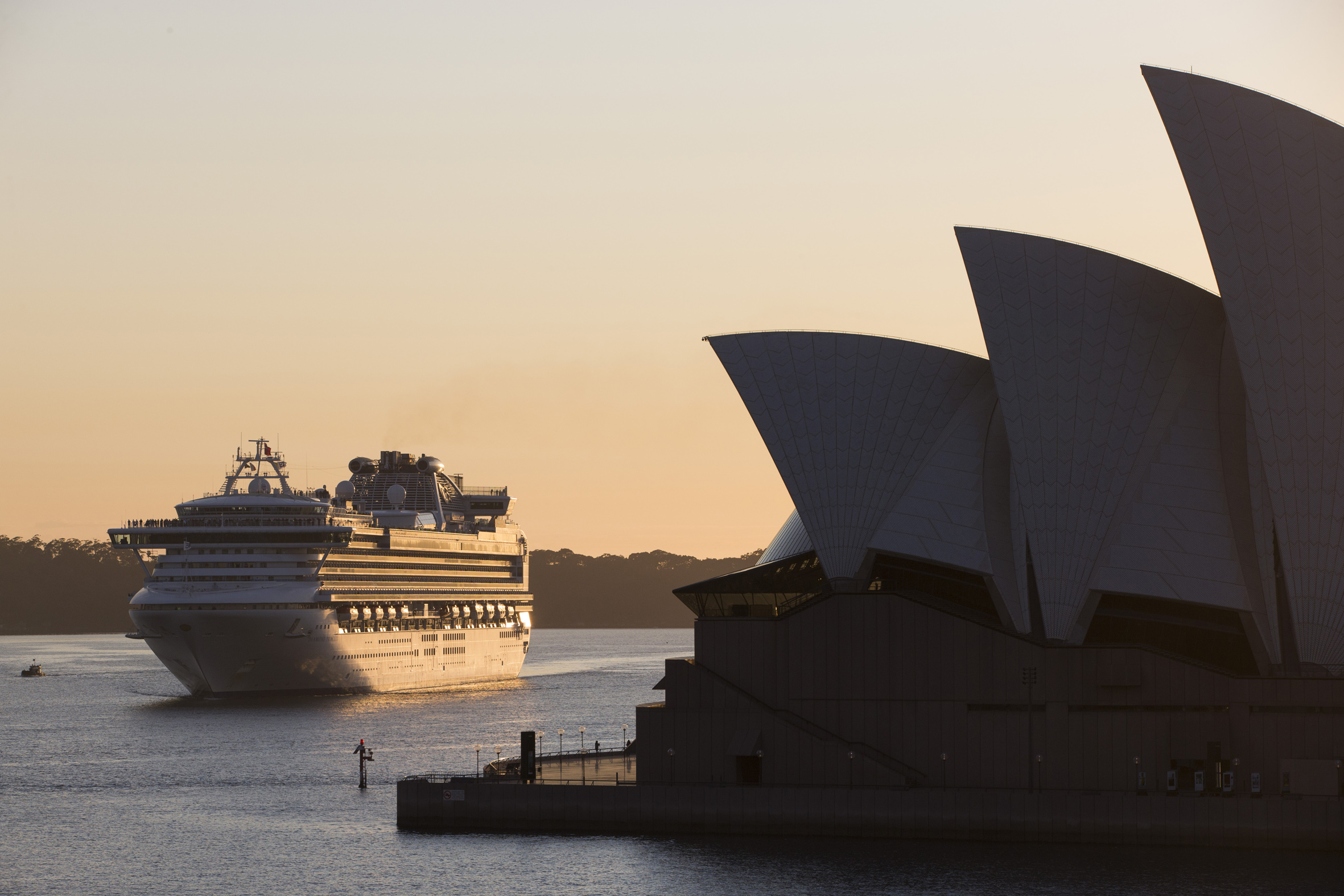 Diamond Princess arriving in Sydney